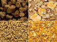 営業 ★畜産物の品質を決める飼料の提案|業界シェアトップクラスの飼料メーカー3