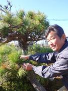 植栽管理スタッフ(木や草をキレイに整える仕事)◎未経験で月給22万円|家族手当あり|月8~10日休み1