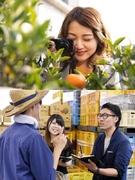 九州・熊本の地域活性化に貢献するディレクター ★地域の魅力を発信し、生産者を支えます!1