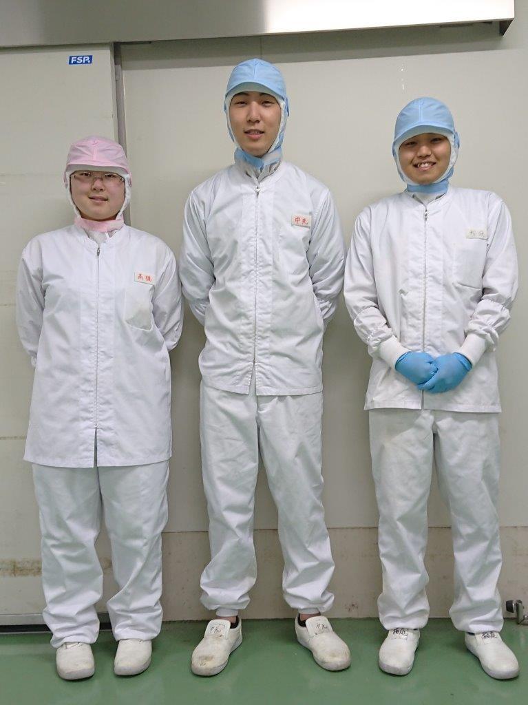 食品製造スタッフ(玉子とうふ・茶わんむし等の製造)イメージ1
