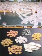 食品開発(管理職候補)★日本で数少ない乾燥食品専門メーカー/独自の乾燥技術はアジア各国で特許取得!1