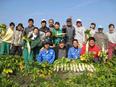 カット野菜の生産管理 ★月給30万円以上|賞与年2回|充実の教育・福利厚生あり!3