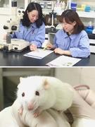 実験動物の飼育管理◆正社員登用率ほぼ100%/残業月10時間以内/育休復職率ほぼ100%1