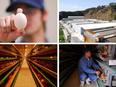 卵の営業 ◎創業60年以上の老舗企業/未経験歓迎/残業月10時間以下2