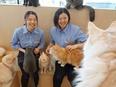 アミューズメントカフェの店長候補(猫カフェなどを運営)◎最短1ヶ月半で店長に|残業ほぼなし2
