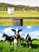 酪農機器のメンテナンススタッフ(未経験歓迎!)◎世界100ヶ国以上に拠点を持つ老舗メーカーです。1