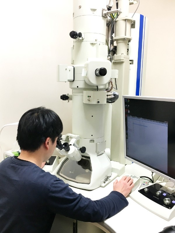技術スタッフ★電子顕微鏡による微生物や細胞の撮影・解析(技法の提案~レポ提出まで一貫して携わります)イメージ1