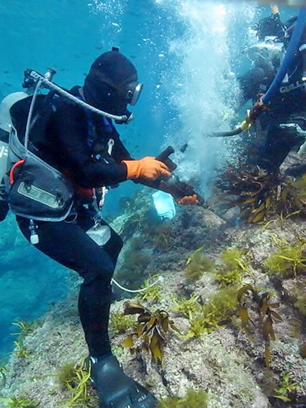 潜水士(船舶や港湾施設の点検・海洋調査などを手がけます)◎未経験歓迎。資格取得からサポート!イメージ1
