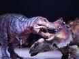 恐竜のデザイナー(絶滅した恐竜を現代に蘇らせる仕事)2