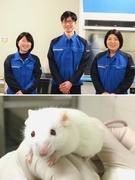実験動物の飼育管理 ★未経験からスペシャリストに!/社会貢献性の高い仕事です!1