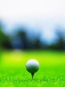 女子プロゴルフの運営スタッフ ◆ツアー運営・ビジネス観点でのコンテンツ企画など/未経験歓迎1