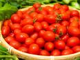 農地開発 ◎設立7年目の農業ベンチャー企業 事業成長率150% 土日祝休み 年間休日122日2