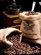コーヒー・紅茶の提案営業◎90年の歴史あるコーヒー事業1
