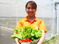 総合職(就労コーディネーター、営業、農園施設責任者)◎農業による障がい者雇用を生み出します2