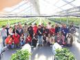 イチゴの営業(就農支援を通じ、宮城県の復興を支える会社です)★U・Iターン支援あり!3