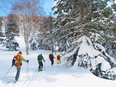 国立公園の利用推進担当(環境省職員)|国立公園の魅力のPR、アクティビティの企画などにも携わります。2
